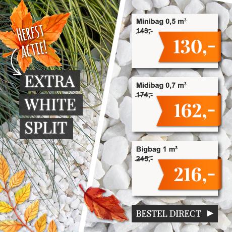 Lente-actie Extra White Split NL
