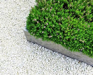 Wit siergrind: ideeën & tips voor een stralend witte tuin!