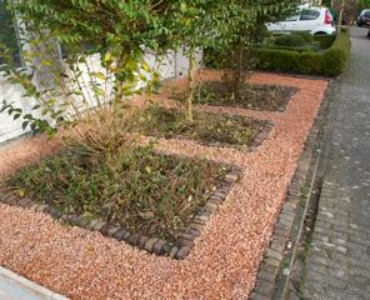 Weg met het grijs: Breng meer kleur in de tuin!
