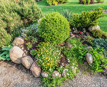 Een rotstuin aanleggen: tips en voorbeelden
