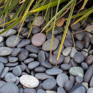 Beach pebbles zwart aangelegd