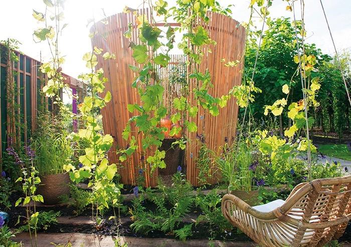 harmonieuze tuin