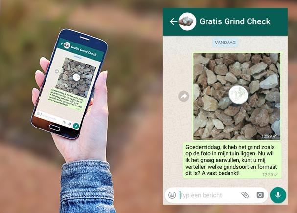 screenshot whatsapp service